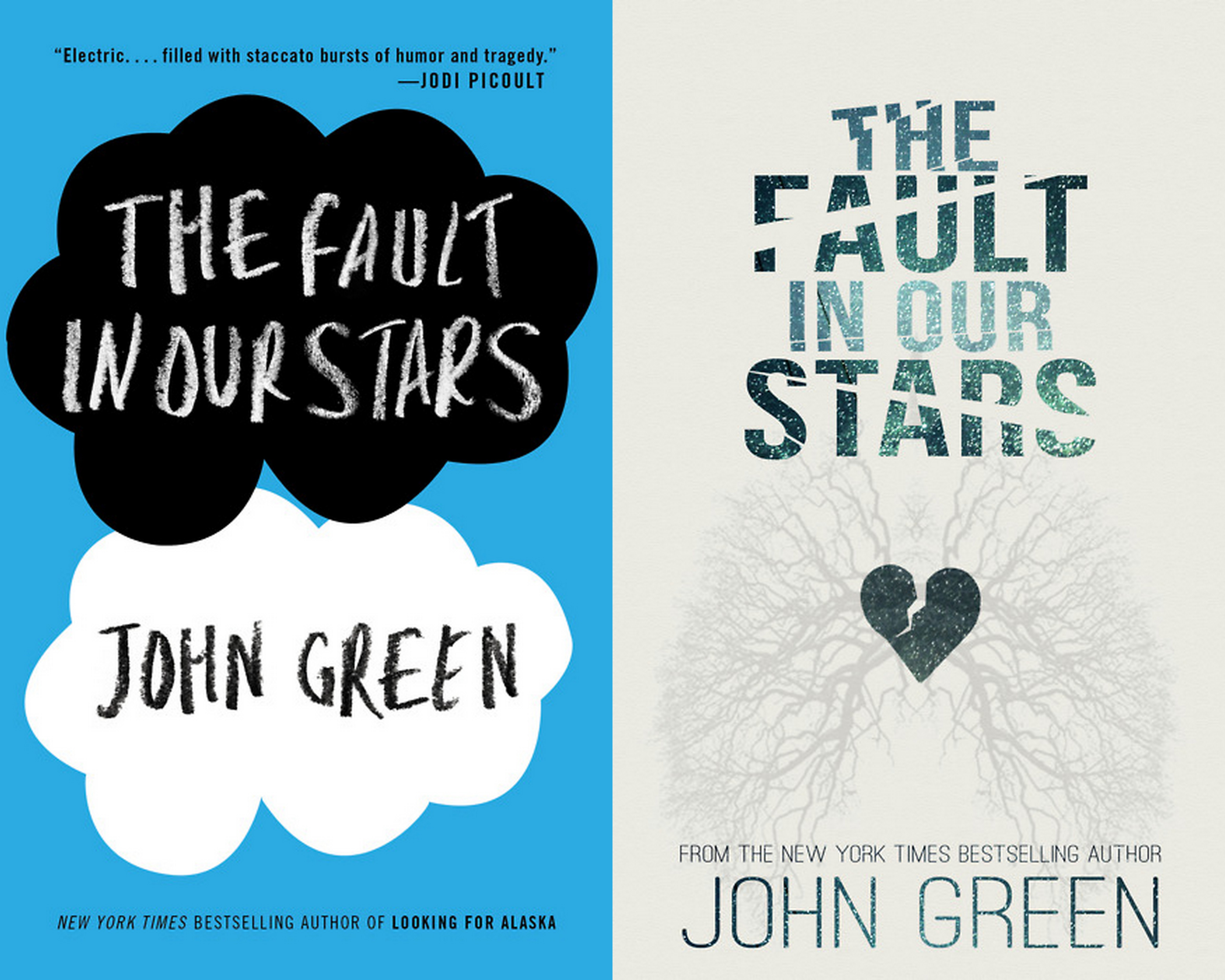 Resume The Fault In Our Stars Resume tfios essay topics theme the fault in our stars by john green second recap bmzndcnigaa z z